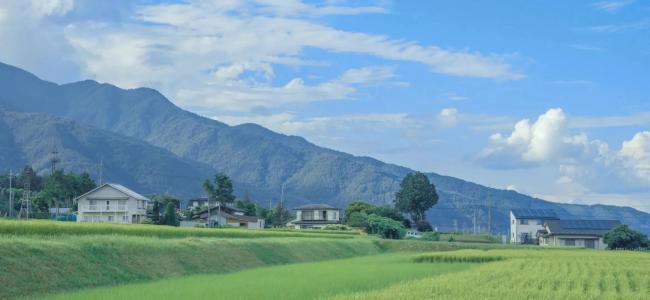 宁静优美的乡村自然景色