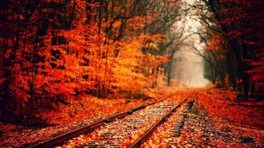 秋季高清壁纸