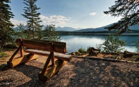 在自然墙纸的长木凳
