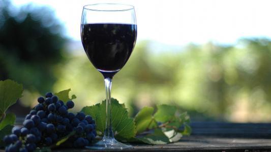 红葡萄酒和葡萄高清壁纸