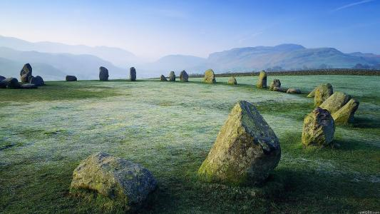石头和草高清壁纸