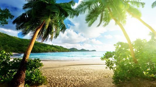 热带天堂海滩高清壁纸