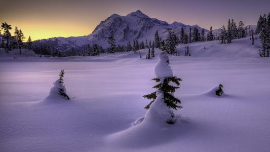 雪高清壁纸