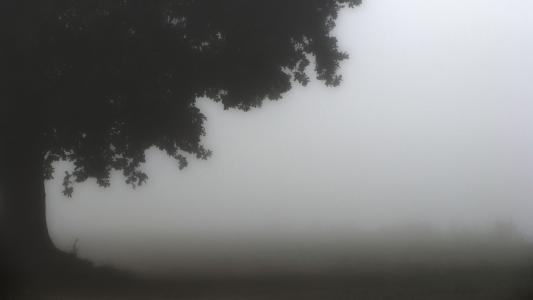 灰色悲伤风景高清壁纸
