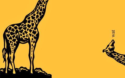 长颈鹿壁纸
