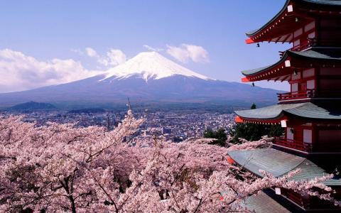 眺望富士山