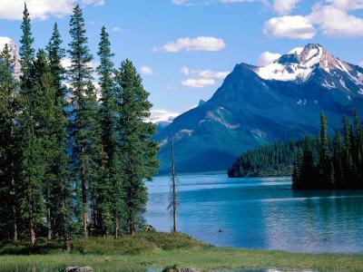 贾斯珀国家公园加拿大壁纸