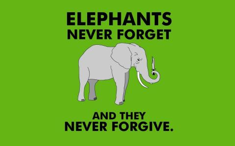 大象永远不会忘记从来没有原谅壁纸