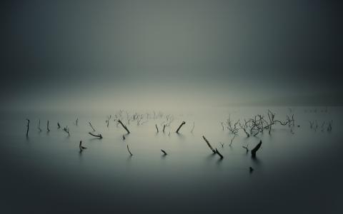 寂静的湖泊