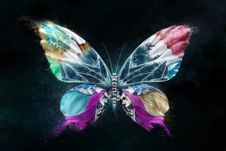 数字艺术蝴蝶壁纸