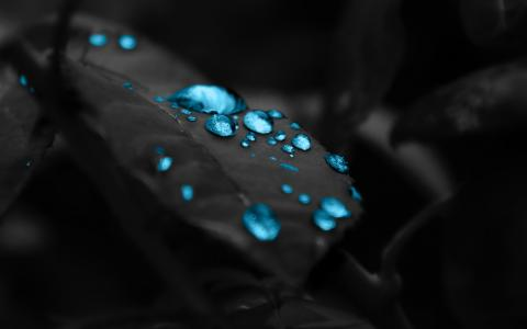 蓝色雨滴壁纸