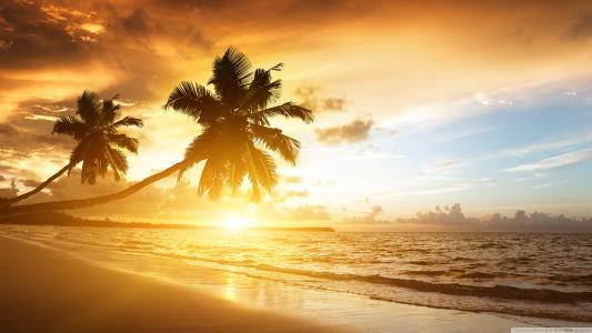热带日落壁纸