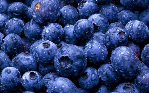 美味可口的蓝莓