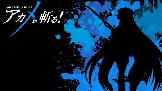 Akame ga Kill高清壁纸