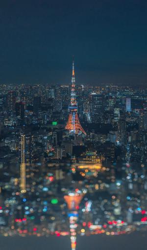 东京夜晚璀璨景色