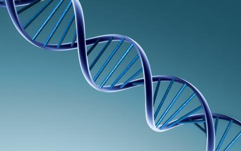 3D DNA壁纸