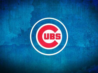 芝加哥小熊壁纸