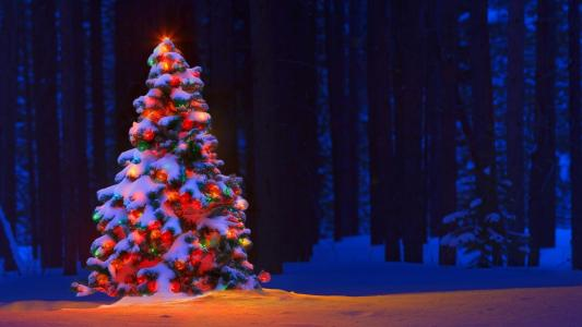 圣诞树高清壁纸