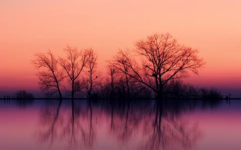 雾湖日落壁纸