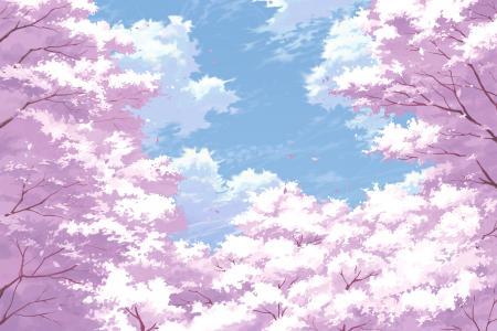 日本开花树木壁纸