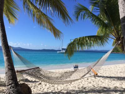 热带海滩和棕榈树壁纸