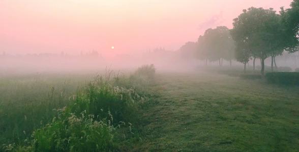 清晨日出唯美景观