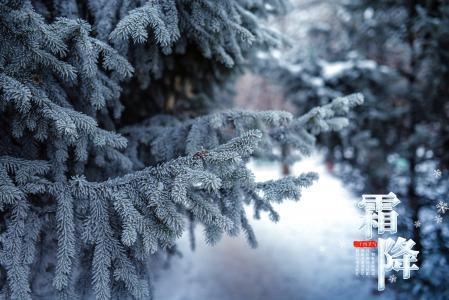 二十四节气霜降美景