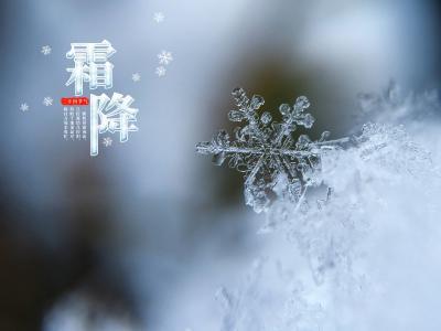 传统节气霜降雪花