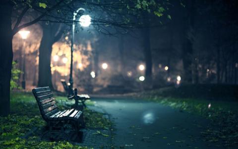 公园在晚上壁纸