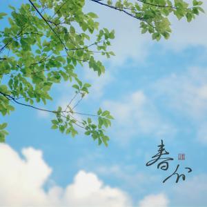 二十四节气春分美景