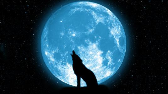 狼和满月壁纸