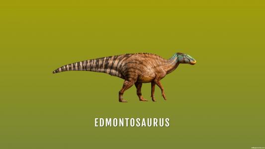 Edmontosaurus高清壁纸