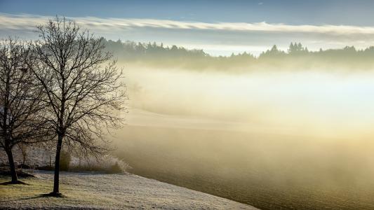 冬季雾高清壁纸