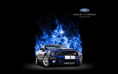 谢尔比GT500壁纸