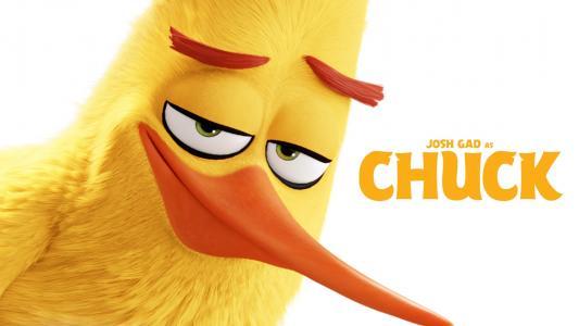 愤怒的小鸟电影高清壁纸