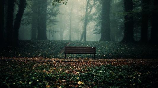 空的长凳高清壁纸