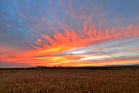 草原上的落日余晖