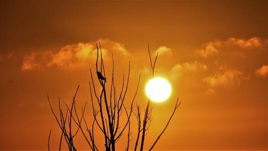 火红迷人的夕阳